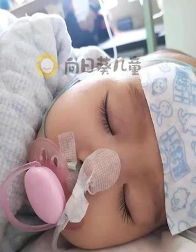 七成肝脏被切除 百天婴儿的抗癌故事